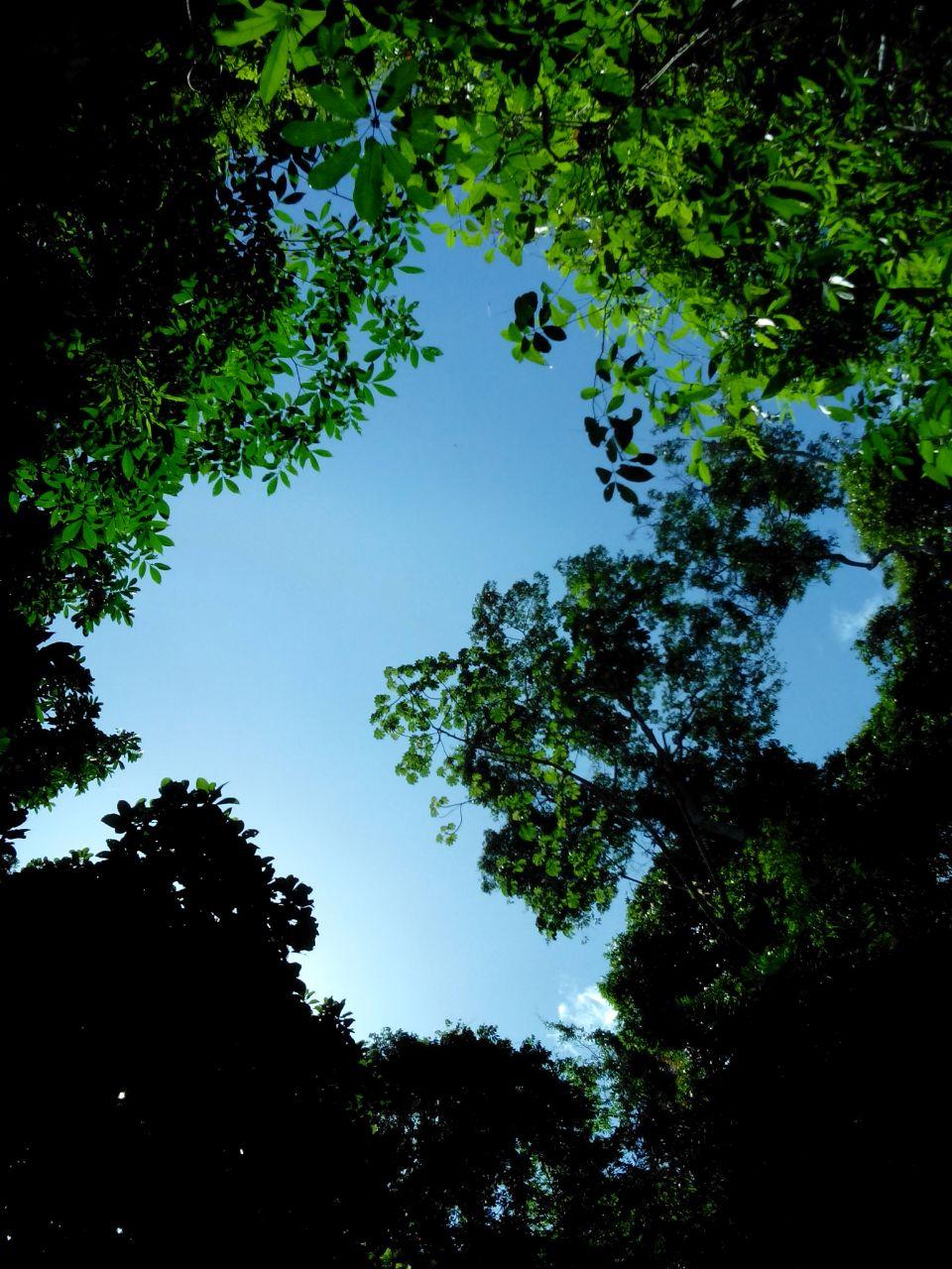 Cielo azul desde la montaña